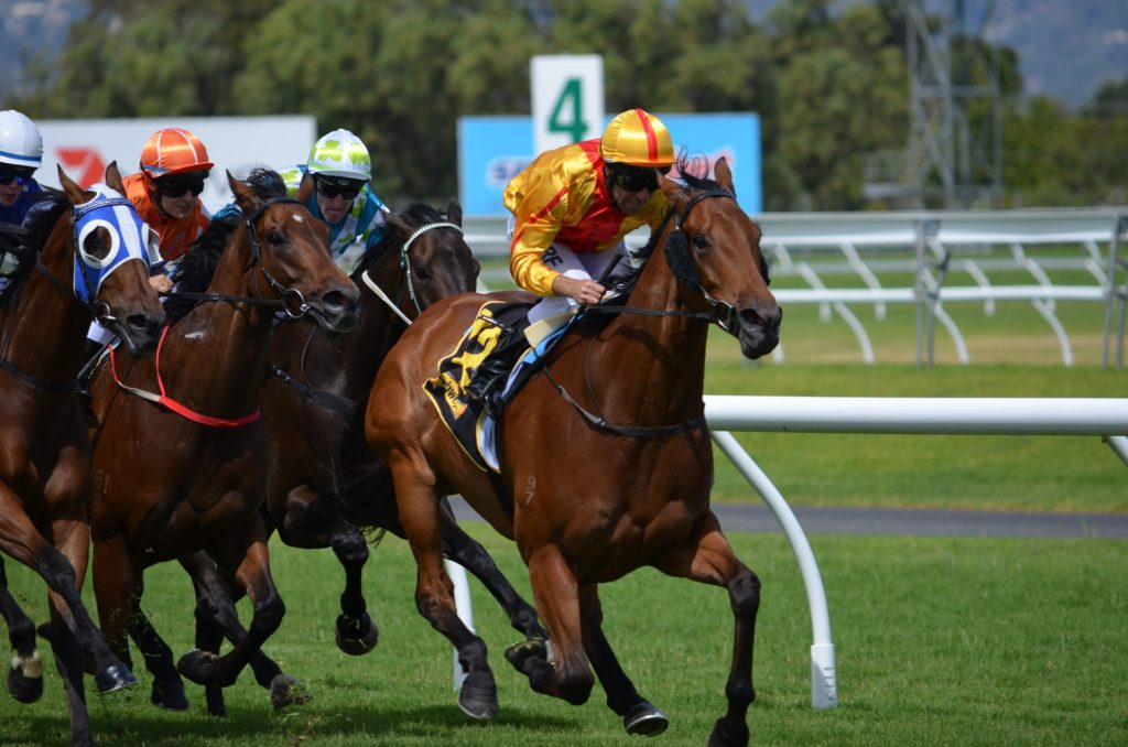 Group 1 Moir Stakes Preview